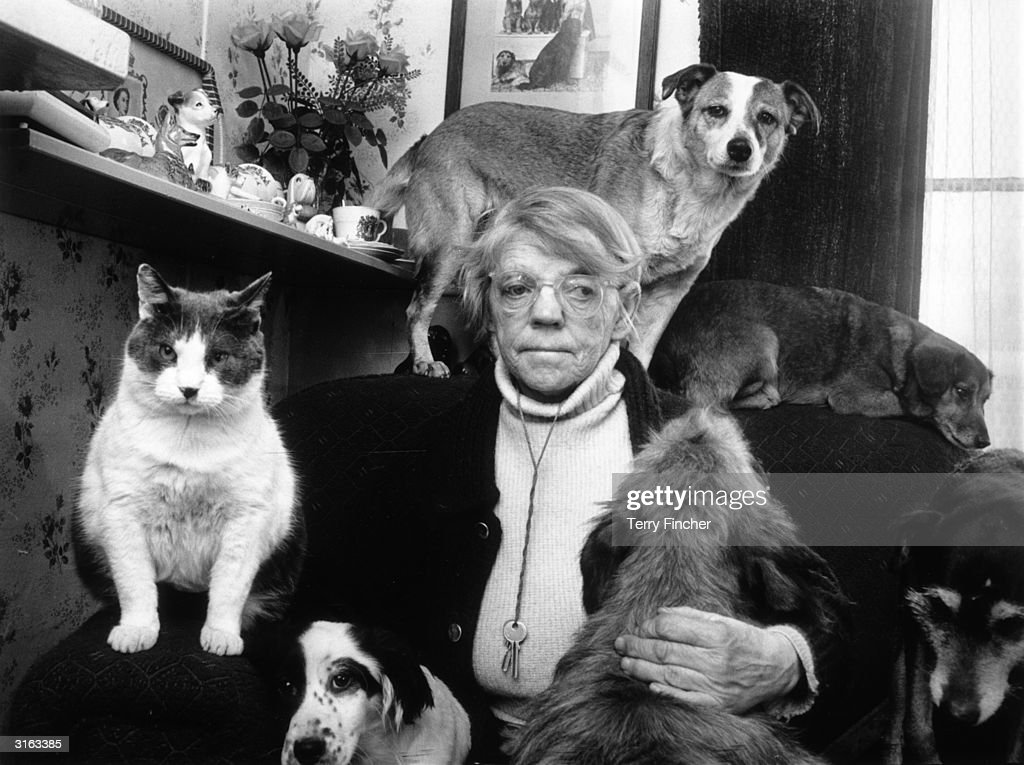 Zoophile Miss Kate Ward with some of her rescued stray dogs and cats.