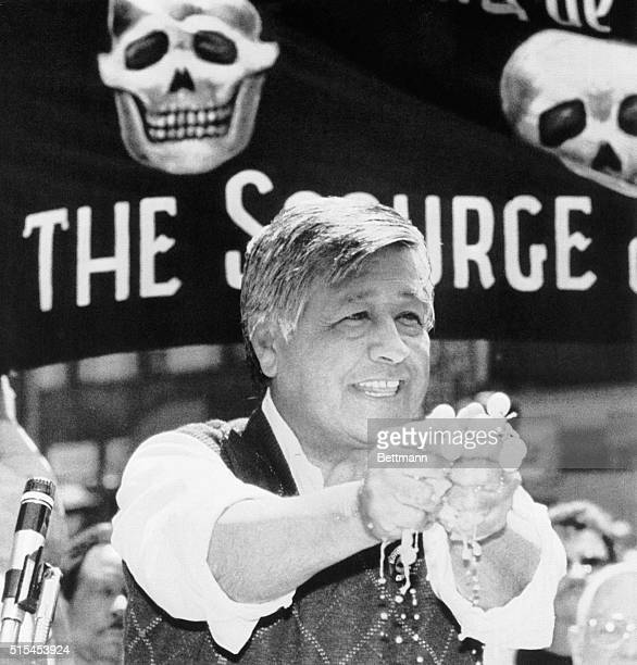6/4/1986New York New York United Farm Workers leader Cesar Chavez squeezes a bunch of grpaes at a noon rally in Herald Square to kick off a new grape...