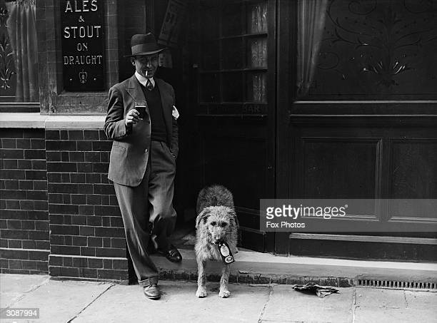 A pet dog and his owner enjoy a beer at the pub