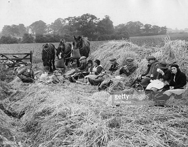 Potato pickers in Harlow Essex resting during their lunch break