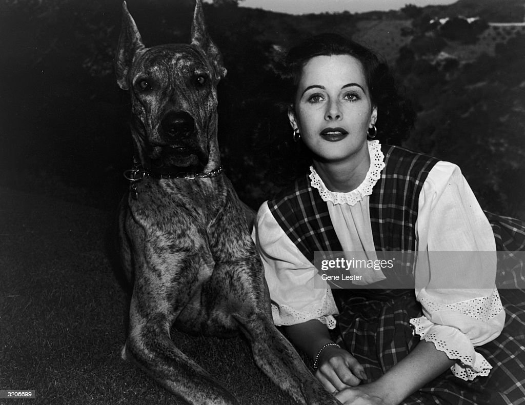 Austrian-born actor <a gi-track='captionPersonalityLinkClicked' href=/galleries/search?phrase=Hedy+Lamarr&family=editorial&specificpeople=208868 ng-click='$event.stopPropagation()'>Hedy Lamarr</a> (1913 - 2000) sitting with a large dog.