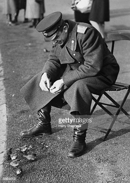 A Russian officer takes time out to feed the sparrows in Hyde Park London