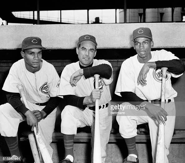 Manager Phil Cavaretta of the Chicago Cubs poses with his two new shortstops Gene Baker and Ernie Banks as they report for duty at Wrigley Field...