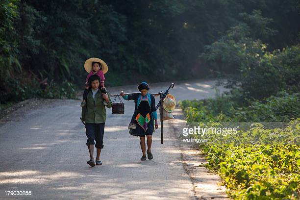 CONTENT] a Chinese Miao family with daughter on her father's shoulder were going to the rice fields to work in the morning at Biasha Miao...