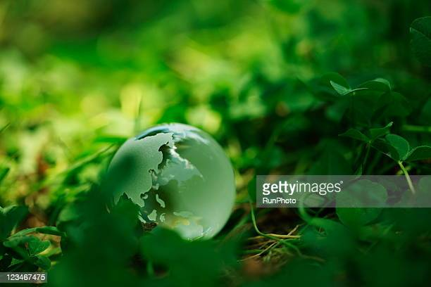 a clear globe in the green