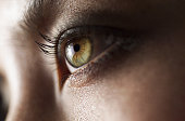 a close up shot of a beautiful green eye
