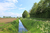a ditch in the beautiful dutch landscape with green grass and a blue cloudy sky after the rain in spring