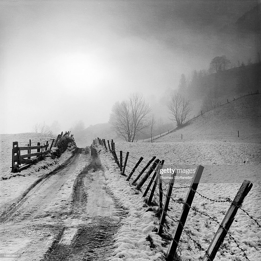 CONTENT] a foggy mood at morning in the country-side near Matrei, East-Tirol, Austria in Winter. Hasselblad 500CM, black/white film