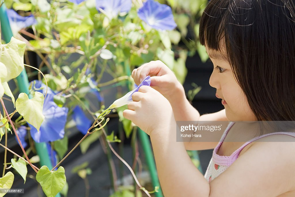 a girl and flowers at garden : Stock Photo
