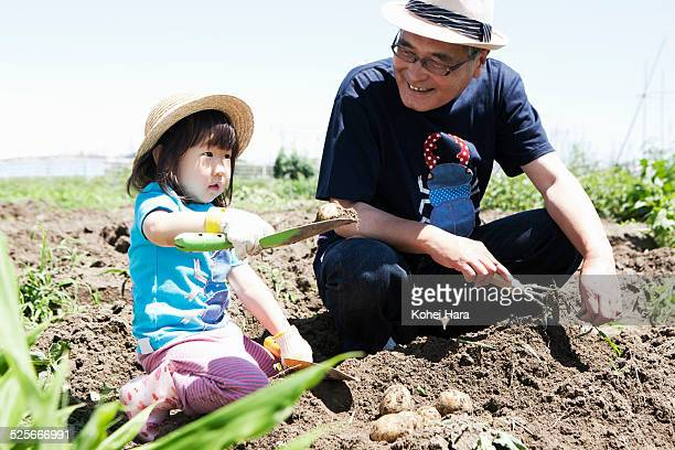 a girl and grandfather doing farm work