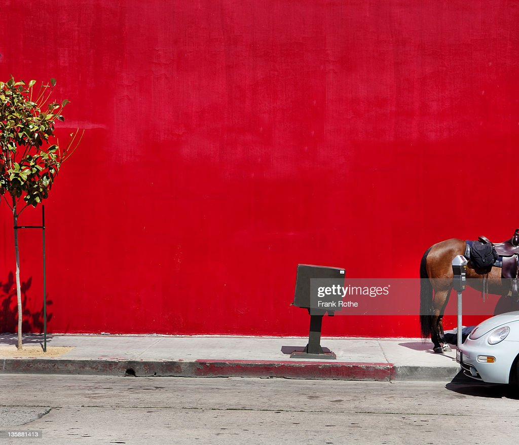 a horse on the sidewalk beside a parked car : Stock Photo