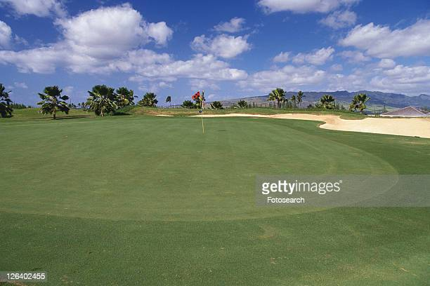 a Huge Golf Course Under a Blue Sky, High Angle View, Hawaii, USA