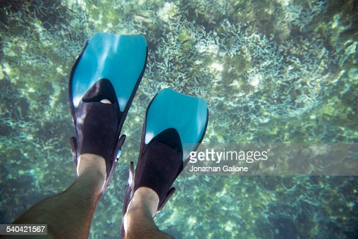 POV of a man wearing fins swimming in the ocean