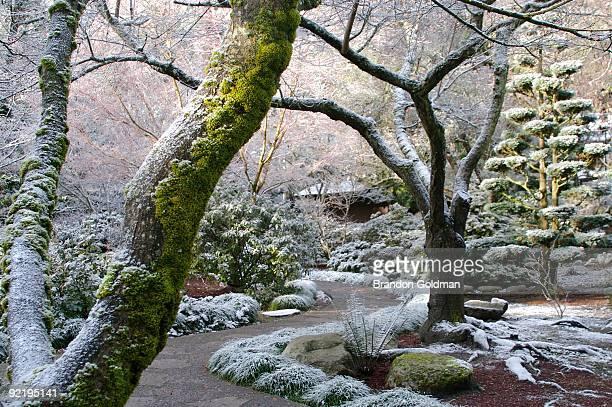 a path between seasons