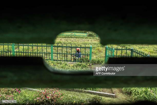 a picture taken on October 17 2017 from a hole in the blind carved and used by Napoleon as an observation point shows a gardener working on the lawn...