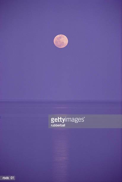a pink full moon hangs centered over a still body of water in the purple night