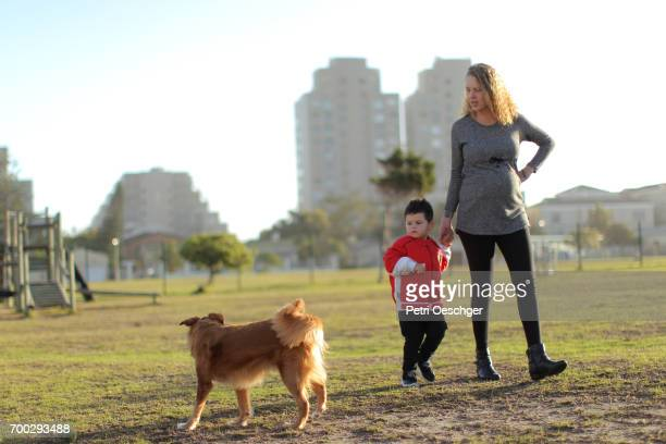 a pregnant Mother walks in the park with her young son and their dog.