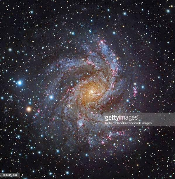 NGC 6946, a spiral galaxy in Cepheus.