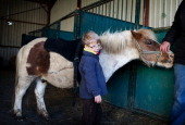 EQUISENS a therapeutic riding center in AsnierelesDijon France Hippotherapy session with a child having autistic disorders