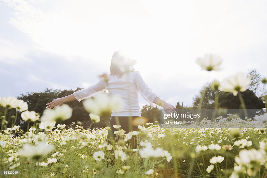 a woman at the flower field : Stock Photo