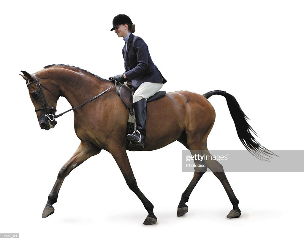 a young caucasian woman dressed in english equestrian clothes is riding a brown horse : Stock Photo