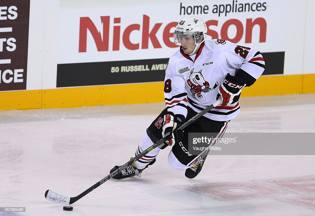 Aaron Haydon of the Niagara Ice Dogs skates during an OHL game between the Sudbury Wolves and the Niagara Ice Dogs at the Meridian Centre on October...