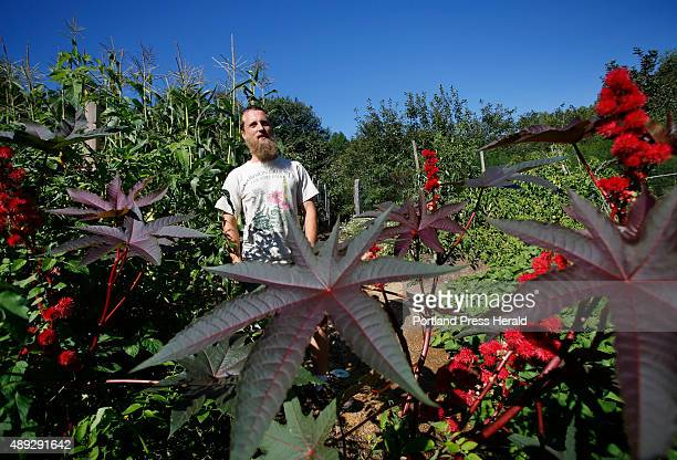 Aaron Parker is a permaculture landscaper who will speak at the Common Ground Fair Parker grows castor beans a toxic plant that serves as a natural...