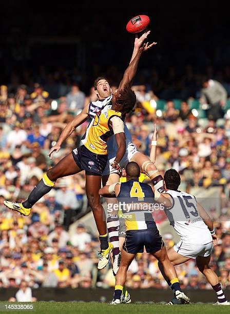 Aaron Sandilands of the Dockers and Nic Naitanui of the Eagles contest a center bounce during the round nine AFL match between the West Coast Eagles...