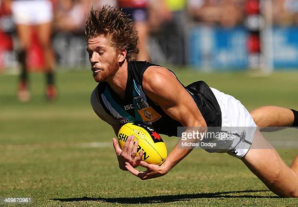 Aaron Young of the Power marks the ball during the round two AFL NAB Challenge Cup match between the Adelaide Crows and the Port Adelaide Power at...