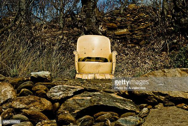 Abandoned chair in the middle of the forest
