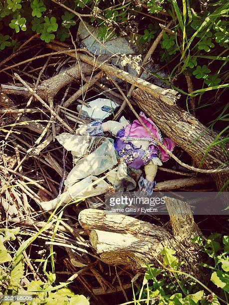 Abandoned Doll In Forest