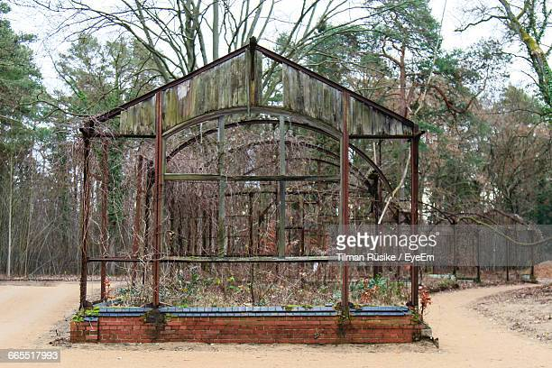 Abandoned Greenhouse Against Trees