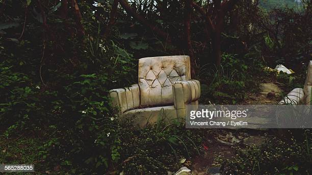 Abandoned Lounge Chairs In Forest By Dirt Road