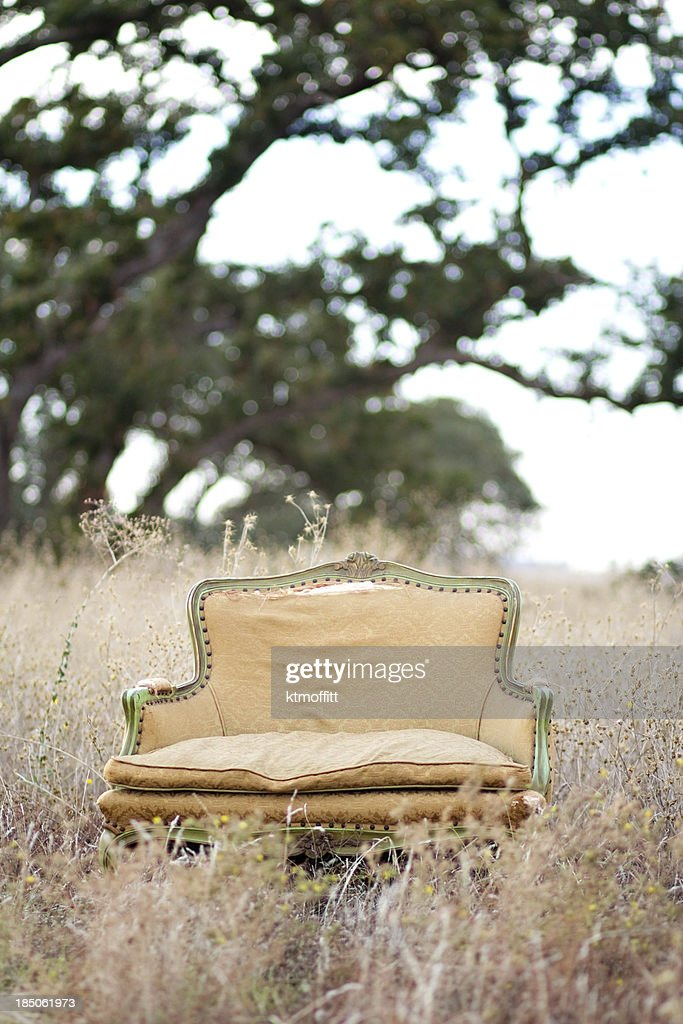 Abandoned Loveseat in Meadow