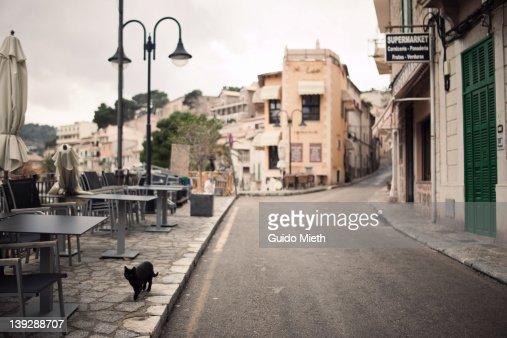 Abandoned narrow street with black cat : Stock Photo