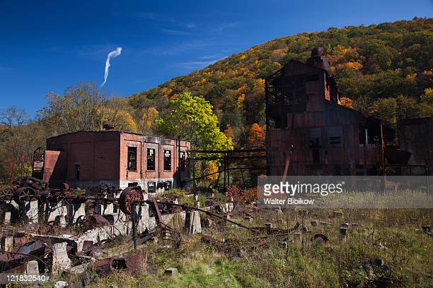 Abandoned saw mill, Cass Scenic Railroad State Park, Cass, West Virginia, USA