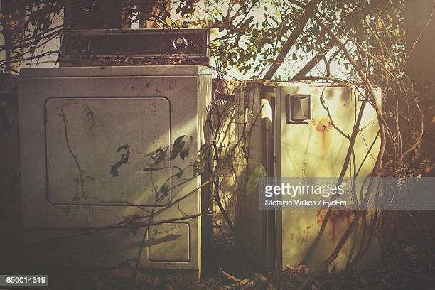 Abandoned Washing Machine On Field In Forest