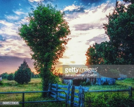 Abandoned Wooden Cottage In Field