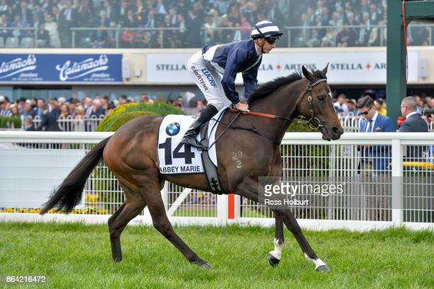 Abbey Marie ridden by Beau Mertens heads to the barrier before the BMW Caulfield Cup at Caulfield Racecourse on October 21 2017 in Caulfield Australia