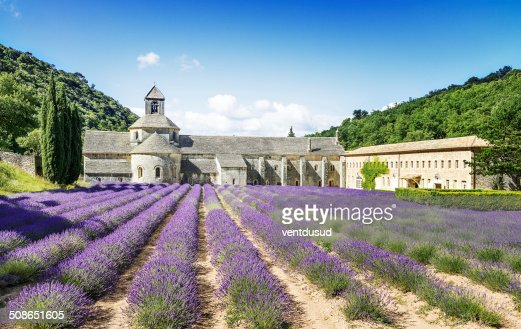 Abbey of Senanque : Stock Photo