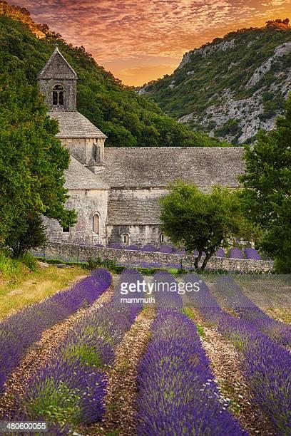 Abbey mit Blühender Lavendel-Feld in der Dämmerung
