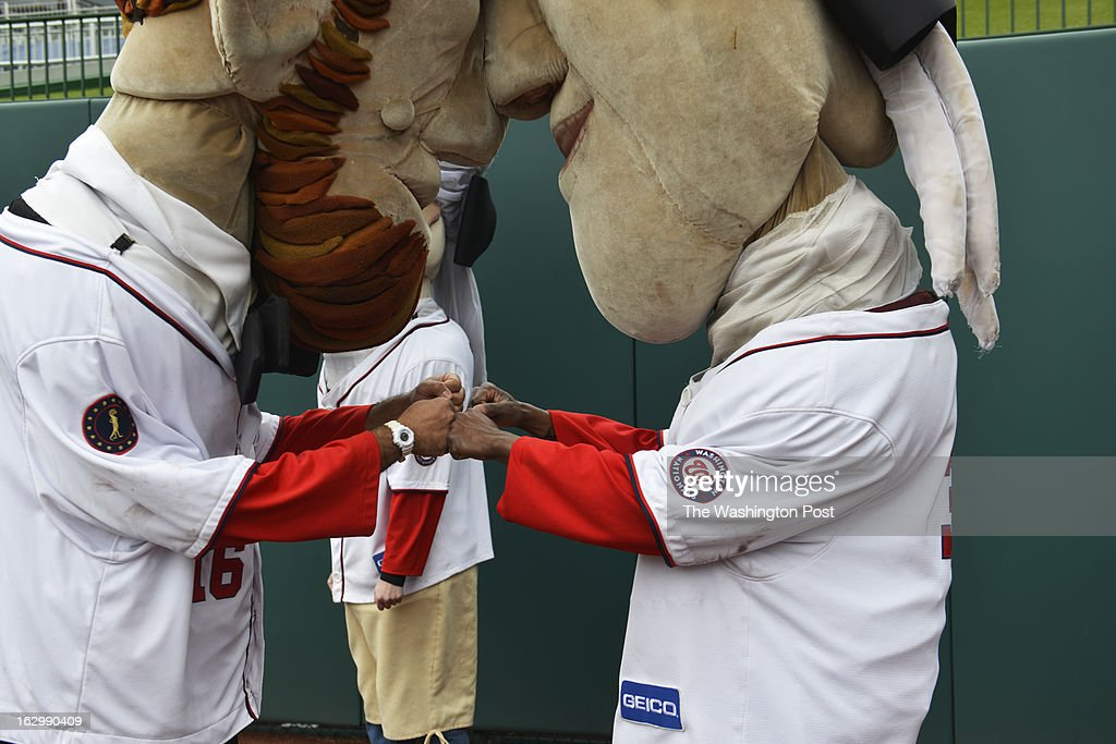 Abe (left) and Tom fist bump after a racing against each other during the Washington Nationals fans audition to become the next Racing President at Nationals Park in Washington, D.C. on March 02, 2013. Candidates are competing for a chance to fill the shoes of Presidents George Washington, Thomas Jefferson, Abraham Lincoln, Theodore Roosevelt and William Howard Taft. Candidates perform freestyle dance, run a 40-yard dash and run two Presidents Races from center field to the home dugout. Developed in 2006, the Racing Presidents are 12 foot oversized mascots who compete in the GEICO Presidents Race during the fourth inning of every Nationals home game.