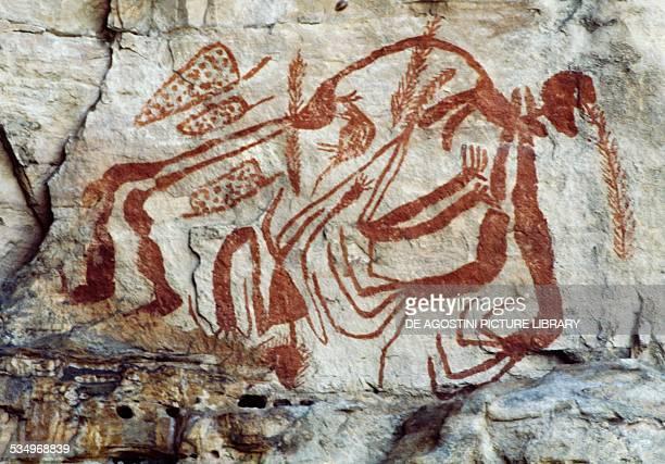 Aboriginal rock paintings near the East Alligator River Arnhem Land Region Northern Territory Australia