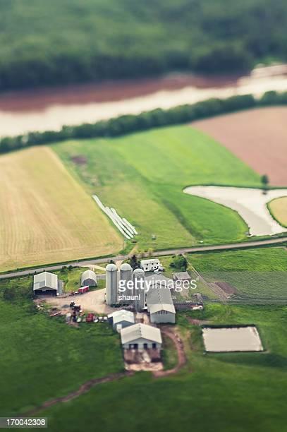 Above the Farm