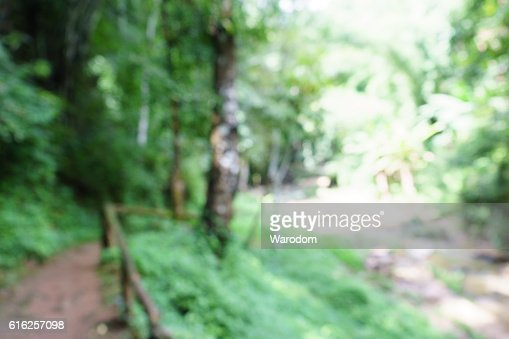 abstract background nature and blur : Stock Photo