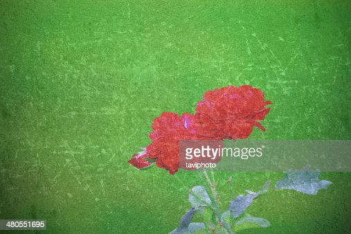 Rosa abstracto hermoso imagen : Foto de stock