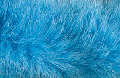 Blue artificial fur for texture or background