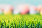 Abstract Easter background with hand painted eggs and grass