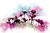 Abstract pink flower blooming on colorful watercolor painting background and Digital illustration brush to art.
