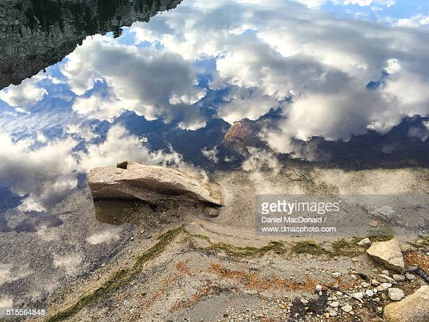 Abstract reflections and details along the shore of an alpine lake